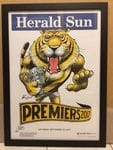 Tigers 2017 Framed