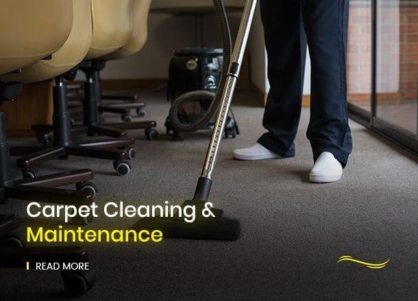 Carpet Cleaning &  Maintenance