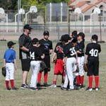 Phoenix Training 2015