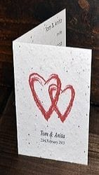 SC-9041 SEEDED PAPER - Greeting Card - Large