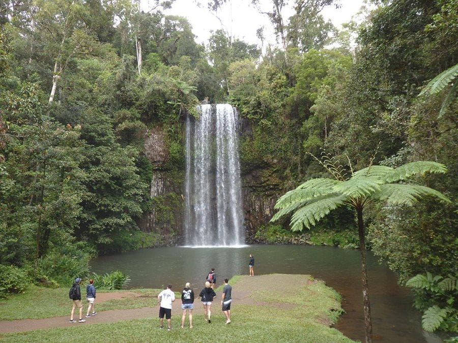 waterfall in cairns