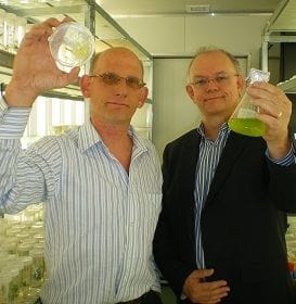 $1M GRANT TO ACCELERATE QLD ALGAE FARM
