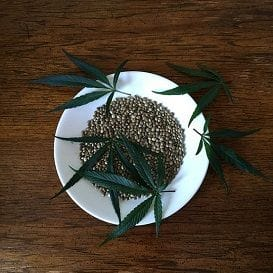 HEMP ON THE MENU FOLLOWING GOVERNMENT SIGN-OFF
