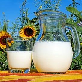 A2 Milk laps up revenue increase amid struggling market