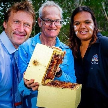 Indigenous honey enterprise abuzz after Star Entertainment deal