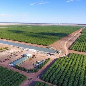 Rural Funds hits back at short seller Bonitas