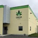 Sky falls in for PharmaCielo's takeover of Creso Pharma