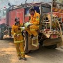 Business Council calls on companies to support bushfire relief