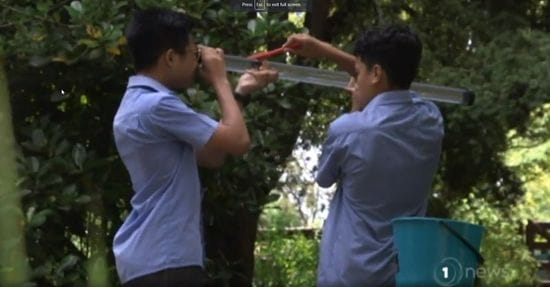 TV feature: Mangere East students rejuvenate creek