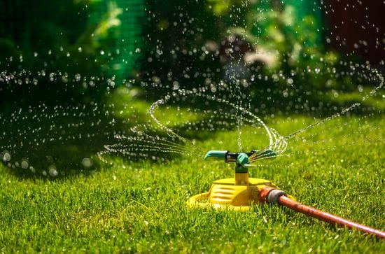 Tips on Watering Your Lawn the Correct Way