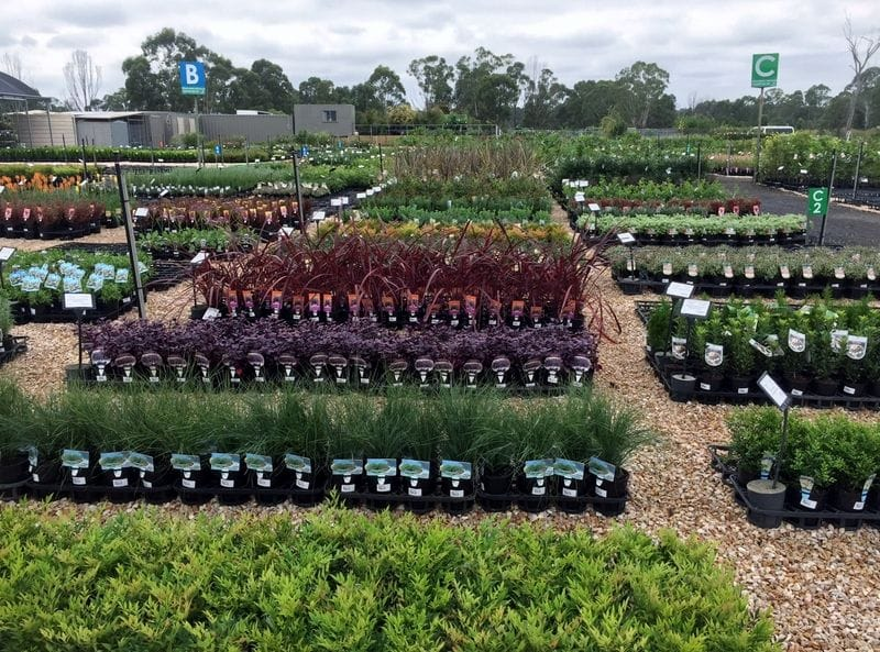 Plantmark New Trade Nursery!
