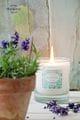 Thumbnail Candle Provence