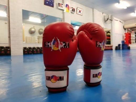 Kickboxing Grading Preparation