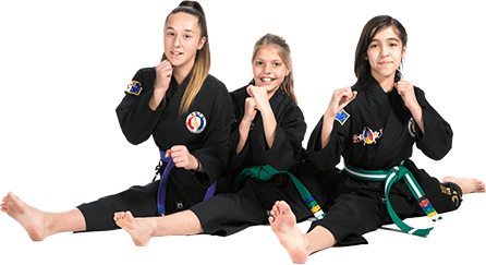 Giant Martial Arts - Hapkido - Kickboxing - BJJ - Weapons - Sydney