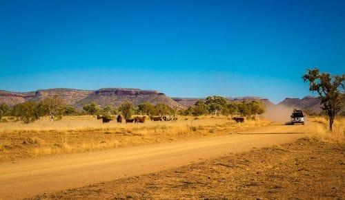 Kimberley Touring