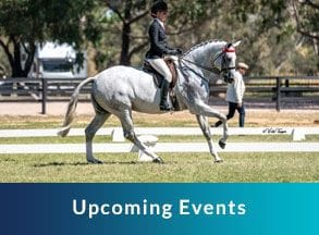 upcoming events, horse and jockey