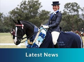 Latest News, Horse and jockey