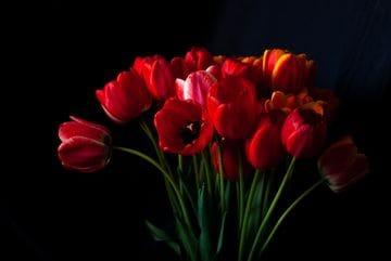 Elzie Florist