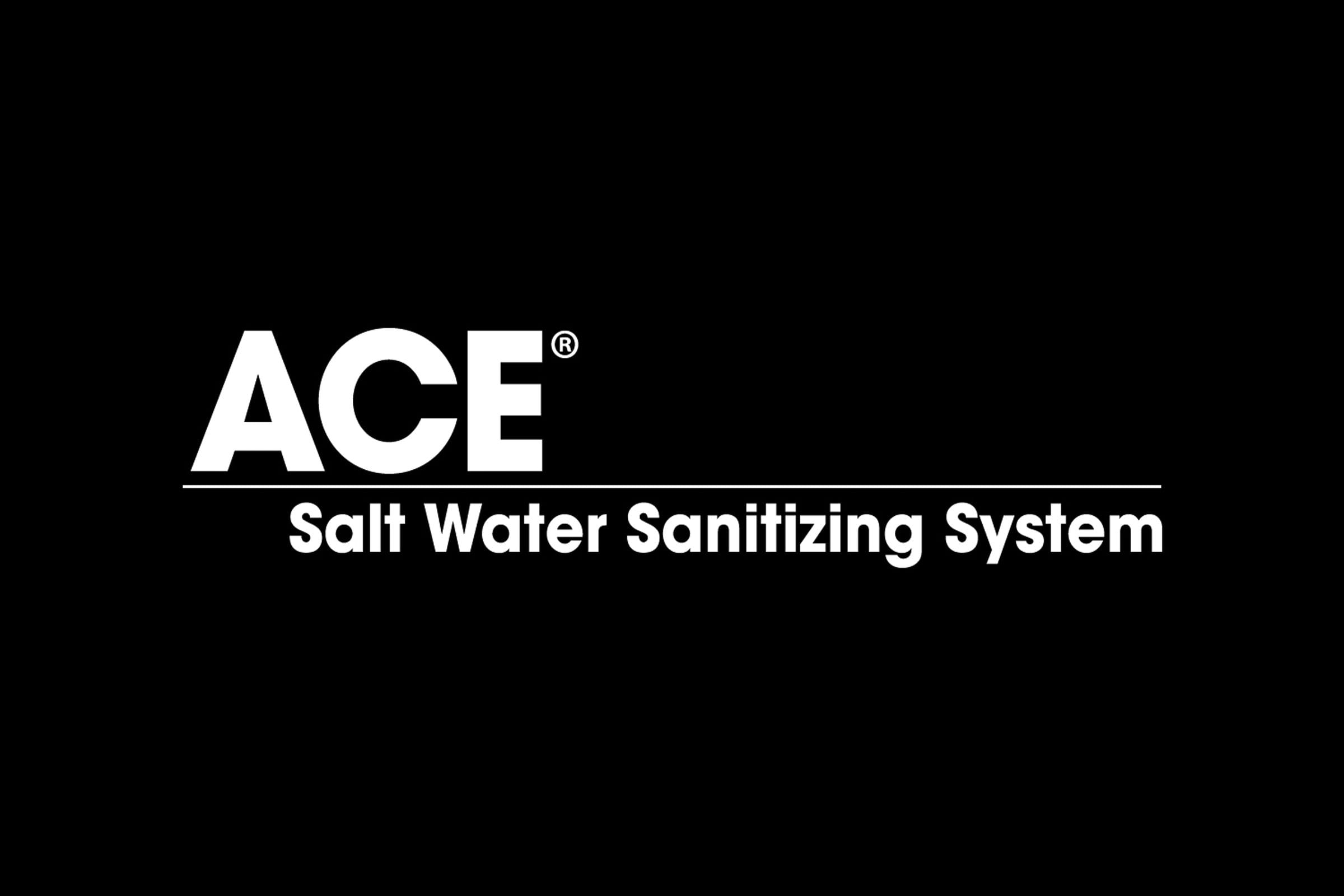 ACE Salt Water Sanitizing System