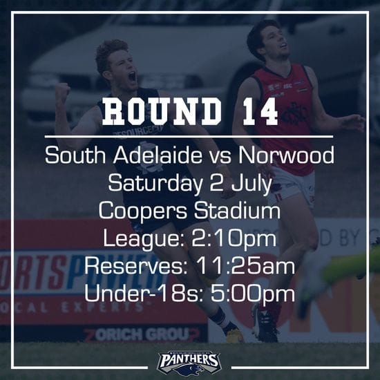 Round 14: South vs Norwood - Teams