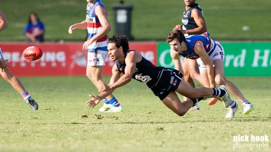 South Look to Hold Strong at Home - Round 17 Match Preview