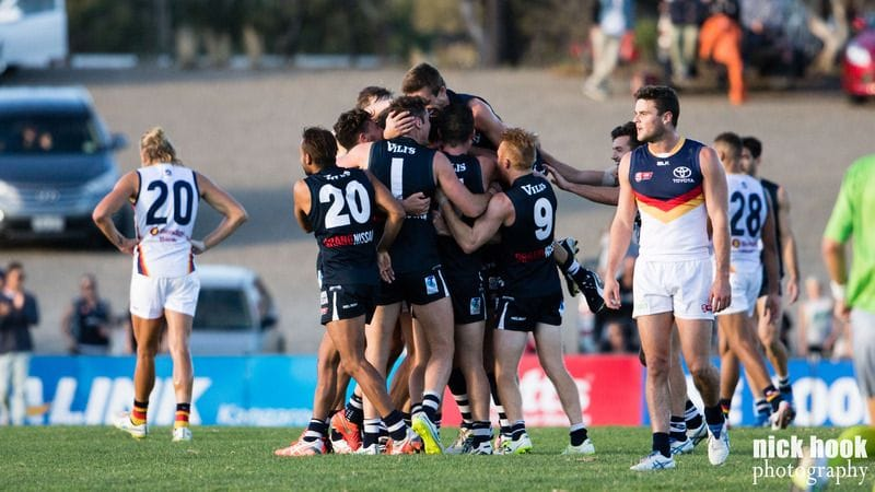 Panthers Last Stand at Hickinbotham - Round 22 Match Preview