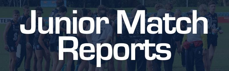 Juniors Report: Round 8 - South Adelaide vs Glenelg