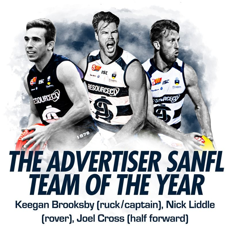 Panthers trio named in Advertiser Team of the Year