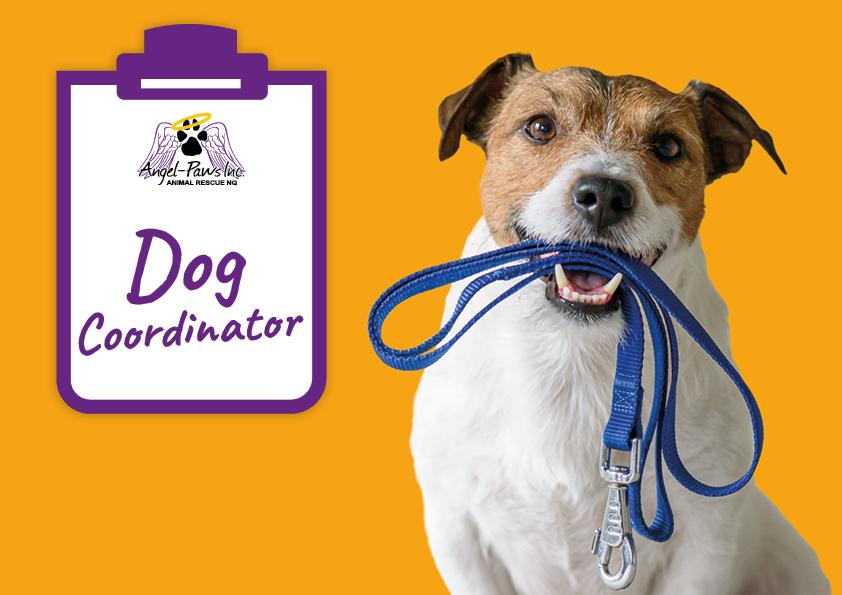 Dog Coordinator