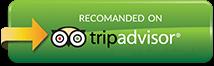 Recommend Reefstar Cruises on Tripadvisor