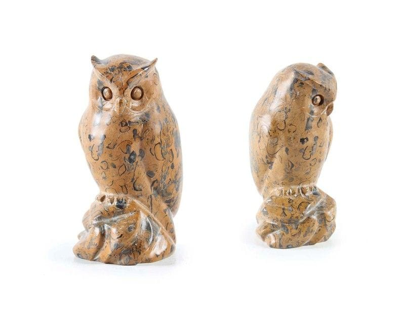 Small Fossil Owl