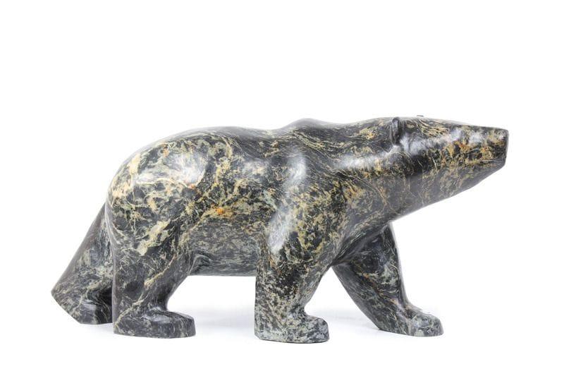 Black Bear (MT1104)