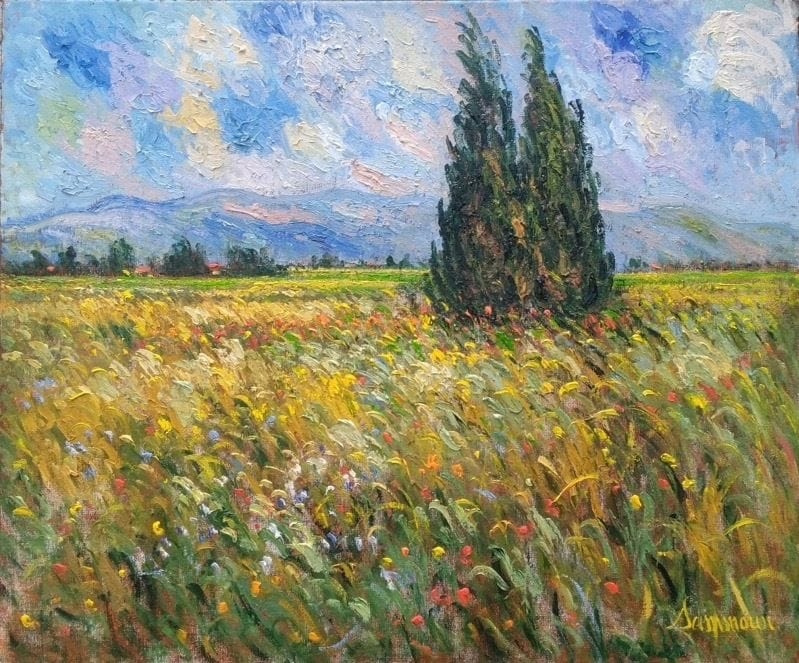 Cypresses and Wheat Field