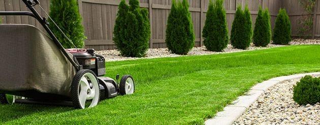 Lawn Mowing Subsidies