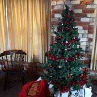 Christmas at Dorrigo - Dec 2015