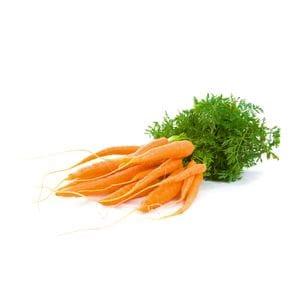 Carrots - Baby