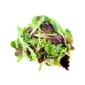 Lettuce - Mesculum