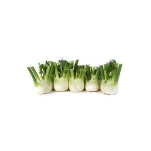 Fennel - Baby