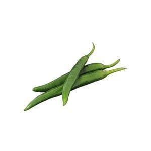 Chilli - Long Green