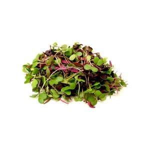 Micro Salad Mix