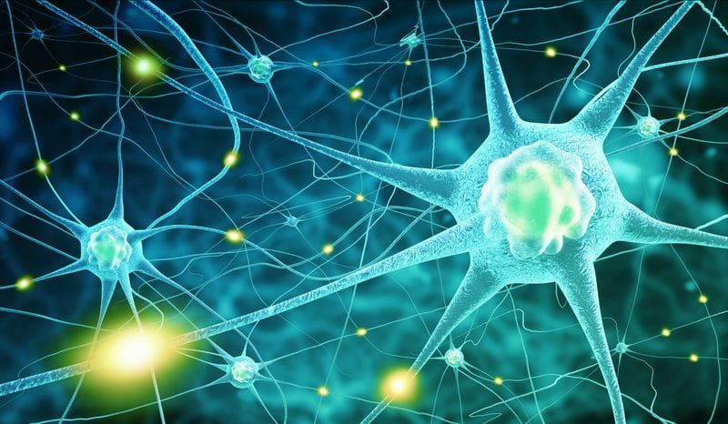 Stem Cells 2.0: Reprogramming Brain Cells for Parkinson's Treatment