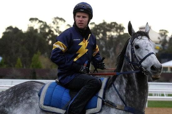 Chautauqua Jumps With The Field At Flemington