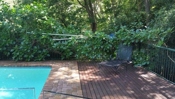 before-cottage-green-pool-fence_St-Ives