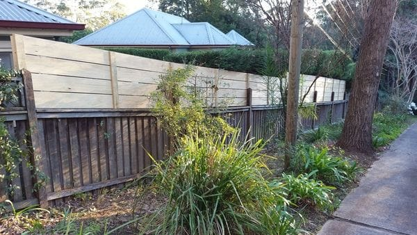 After 1 - Boundary fence was raised to 1.8m high with treated pine slats
