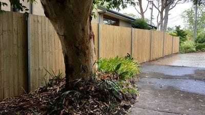 timber paling boundary fence