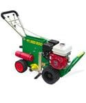 "Turf Cutter 14"" Petrol - Red Roo"