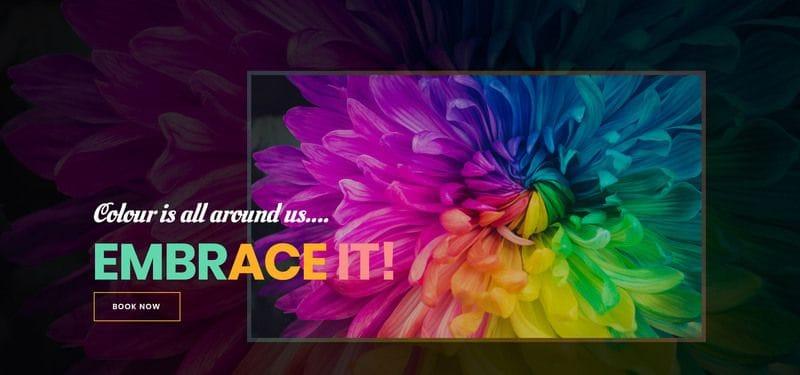Holistic Colour & Paint Design Website Launch