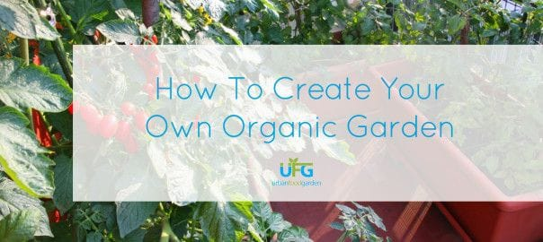 5 Steps To Organic
