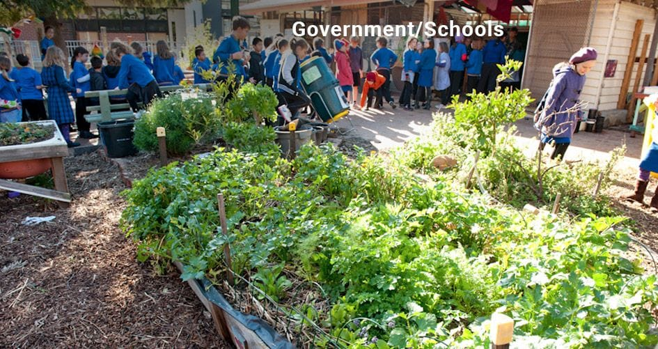 School Garden set up by Urban Food Gardens