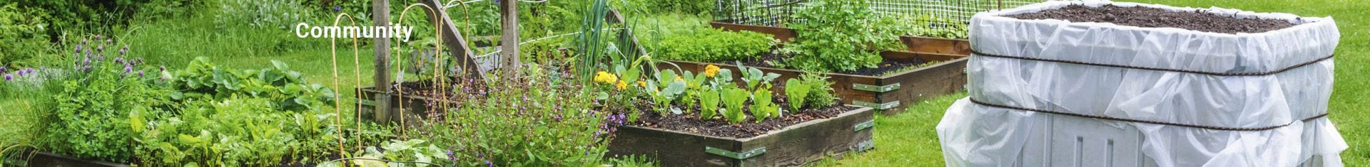 Community Vegetable and Herb Gardens built for you